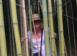 Peut-on parler de jardin Feng Shui ?